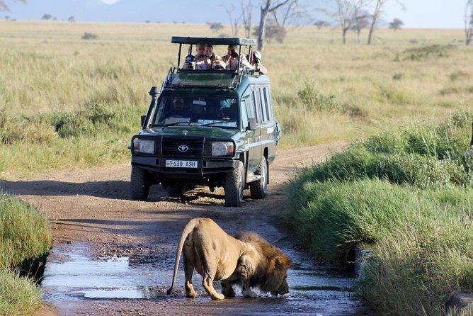 3 Days Private Safari to Samburu National Reserve