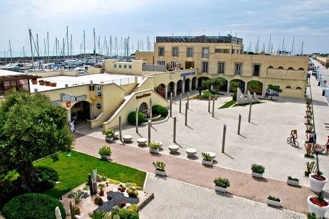 Ancient Ostia Ruins and Beach Tour from Civitavecchia Port