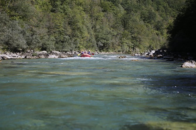 Full-day Tara River White Water Rafting Tour from Kotor