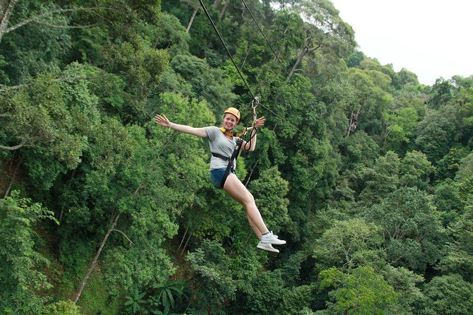 Chiang Mai: Full-Day Zipline Experience with Lunch