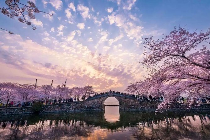 Wuxi Lingshan Buddhist Scenic Spot and Tai Lake Private Tour