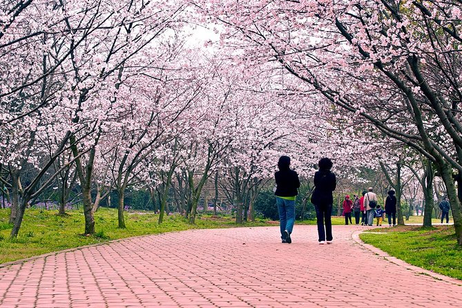 Half-Day Wuxi Yuantouzhu Park Private Guided Sightseeing Tour