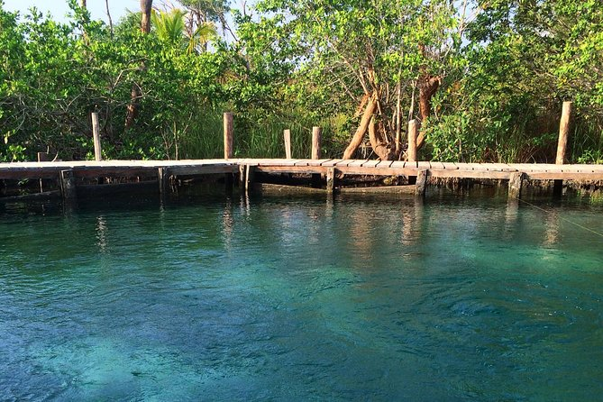 Holbox Tour - Island & Cenote from Cancun and Playa del Carmen