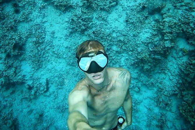 Shoreline Introductory Dive