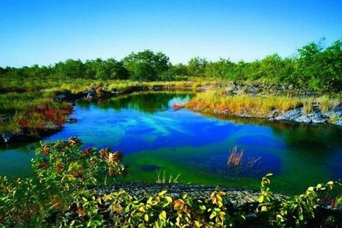 3-Day Private Tour to Heilongjiang Province from Harbin