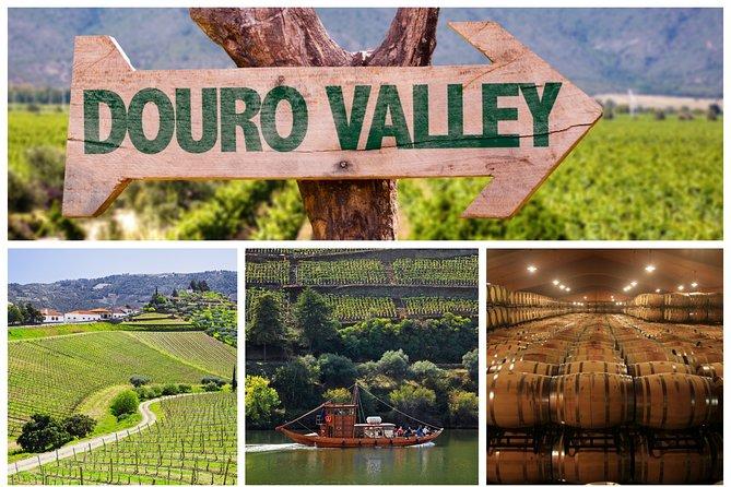 Excursão por Douro Valley: Degustação de vinhos, cruzeiro pelo rio e almoço saindo do Porto