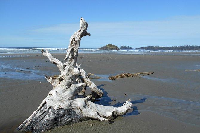 Salish Sea Voyager - British Columbia small group adventure