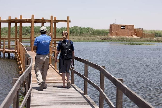 Private Full-Day Tour in Azraq Wetland Reserve from Amman
