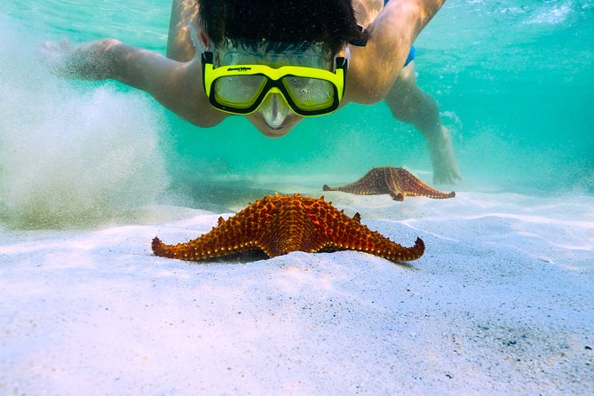 Private Stingray City and Snorkeling Half Day Charter for 8 Guests