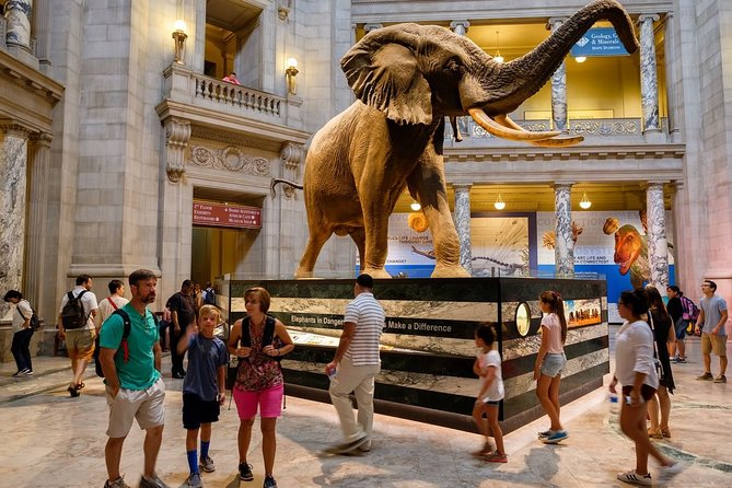 Private Tour Museum of Natural History in Washington DC