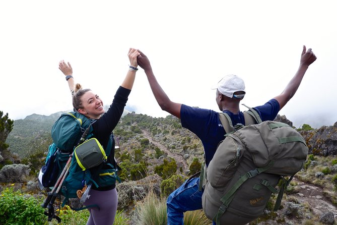 Joy Climbers - One Day Hiking on Mount Kilimanjaro to Mandara Hut photo 1