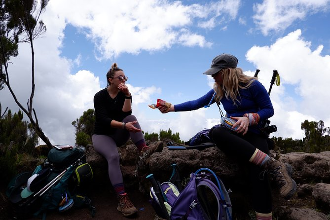 Joy Climbers - One Day Hiking on Mount Kilimanjaro to Mandara Hut photo 6