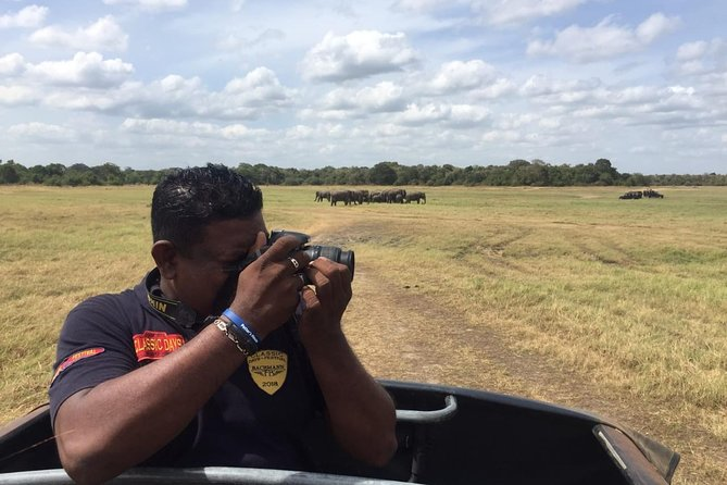 Yala National Park Full-Day Jeep Safari with Lunch
