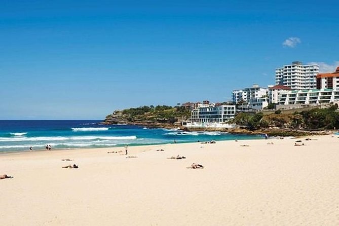 Sydney Bondi Beach and Watsons Bay Half-Day Tour