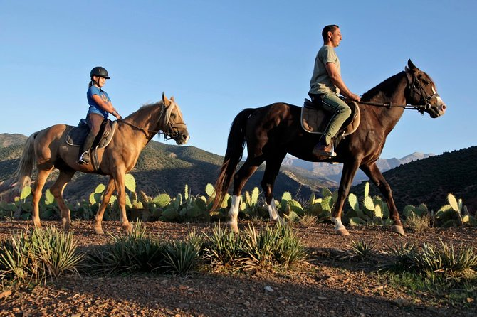 Day Tour From Marrakech To Majestic Atlas Mountains & Horseback Ride