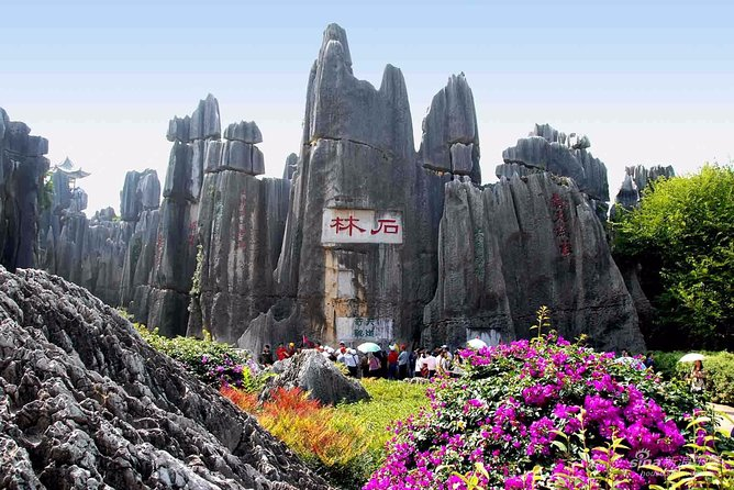 Private Tour of Stone Forest Geological Park in Kunming