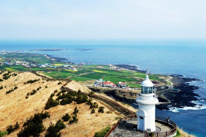 Jeju Customizable Private Tour