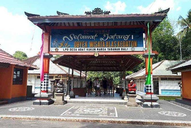 Amazing Tanah Lot and Uluwatu Temple Tour