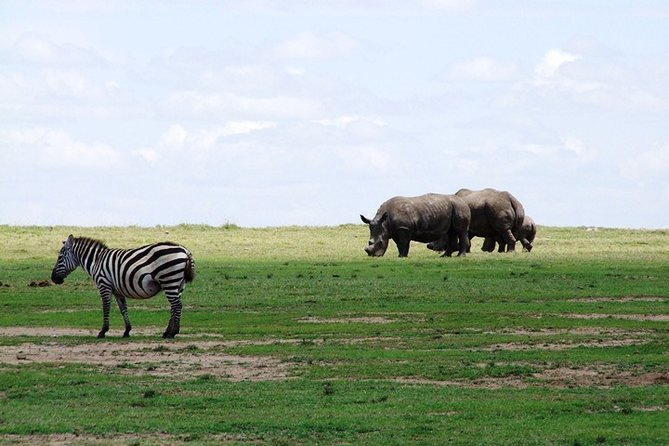 7 Days Safari Tour from Mombasa