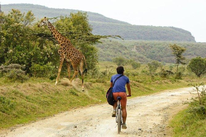 Biking in Hells gate National park