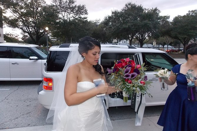 Beautiful bride and big day DeLoxLimo provided all transportation.