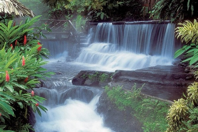 Tabacon Resort Hot Spring and Arenal Volcano Hike from Guanacaste