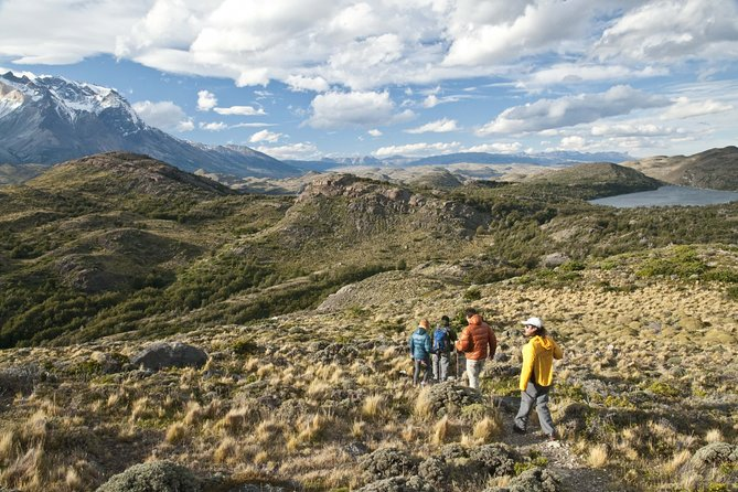 5-Days Exploration at Elqui Valley & Humboldt Penguins National Reserve