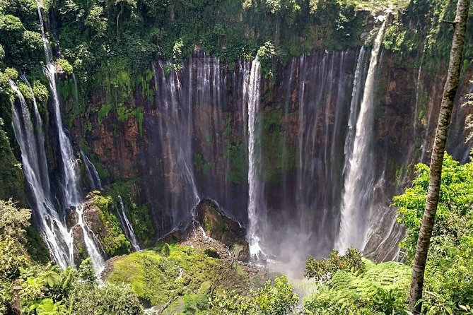 Full-Day Private Guided Eco Tour of Tumpak Sewu Waterfall