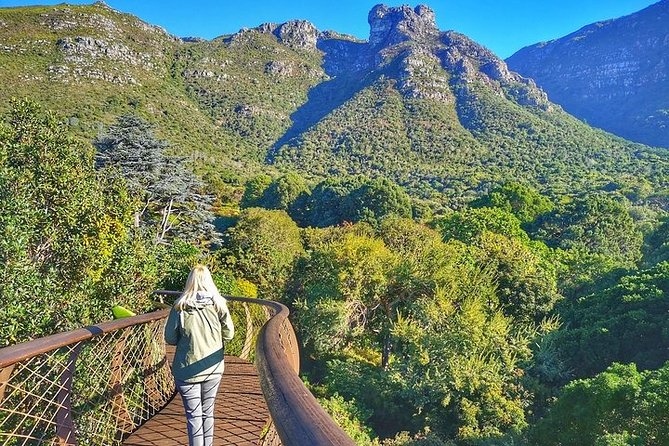 Kirstenbosch National Botanical Garden Private Guided Walk
