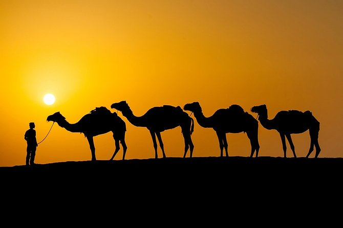 Sunset Camel Ride In Agafay Desert From Marrakech