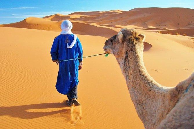 Private 3 Days Desert Tour From Marrakech To Merzouga Dunes & Camel Trek