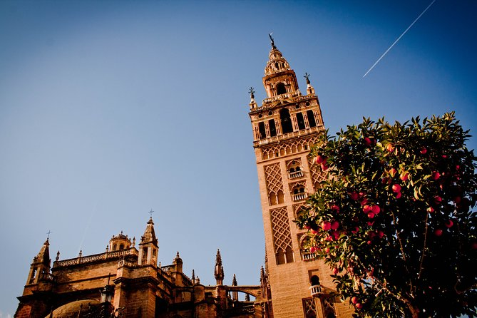 The highlights of Seville. 5h Private Tour photo 9
