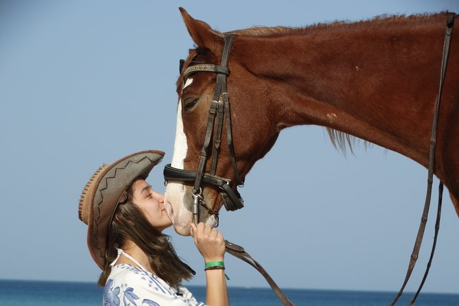 Excursions 2 hours horse and camel riding - Hurghada