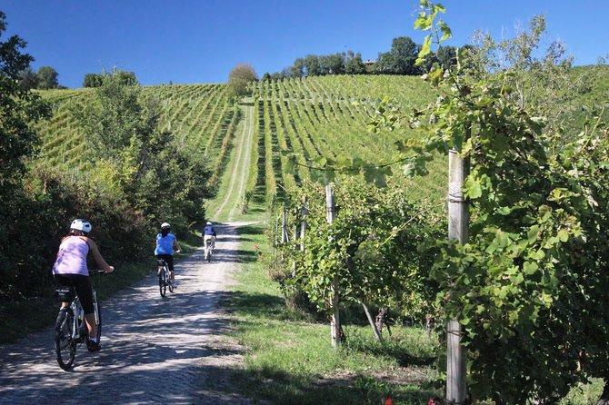 Biking in Vino Nobile di Montepulciano terroir with Wine and Food Tasting