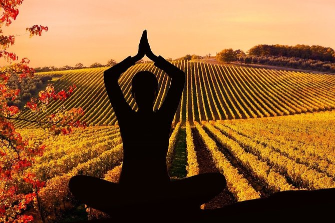 Yoga in Tuscan Vineyard with Private Wine and Food Tasting