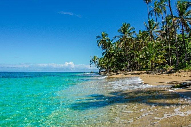 Cahuita National Park Walk and Banana Plantation. Shore Excursion from Limon