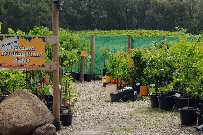 Yarra Valley Wineries and Rayners Orchard Tour from Melbourne