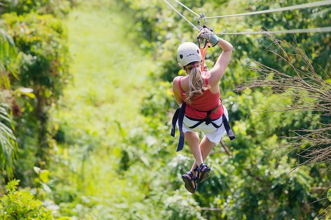 Zipline Canopy Tour & Tortuguero Canal Boat tour. Shore Excursion from Limon