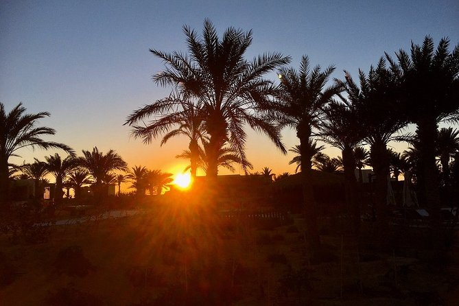 Sunrise at the Oasis of Tozeur