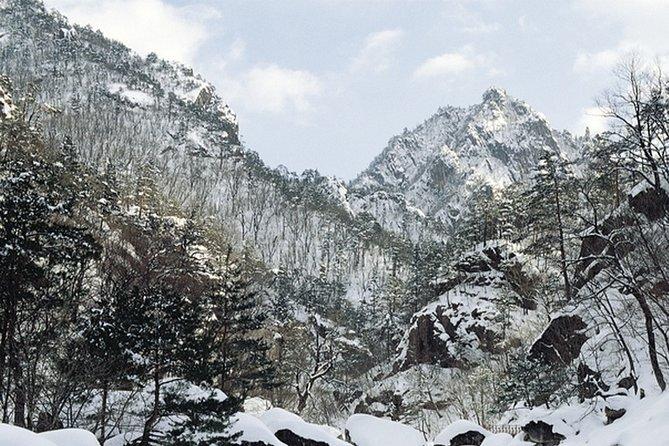 Mount Seorak and Sokcho Customizable Private Tour