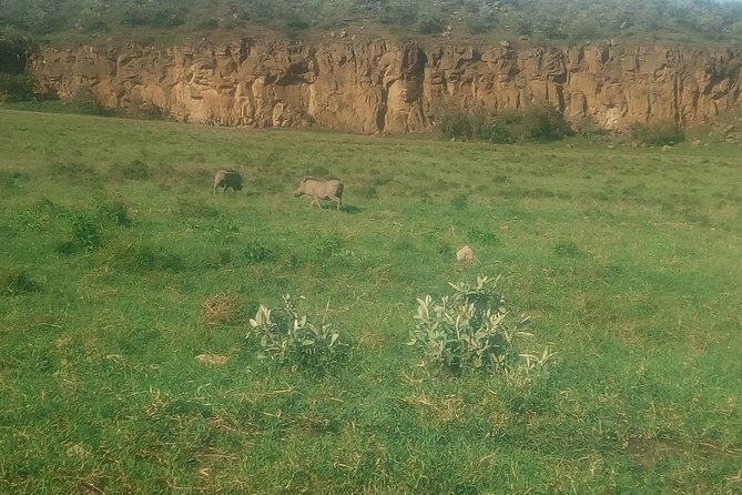 Lake Naivasha with Crescent Island 2-Day Safari from Nairobi