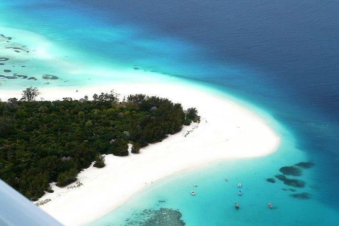 Half-Day Snorkeling Tour in Mnemba Island Zanzibar with Pickup