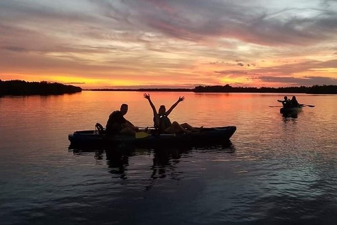 Mangrove Tunnel & Dolphin Sunset Kayak Tours with Cocoa Kayaking in Cocoa Beach!
