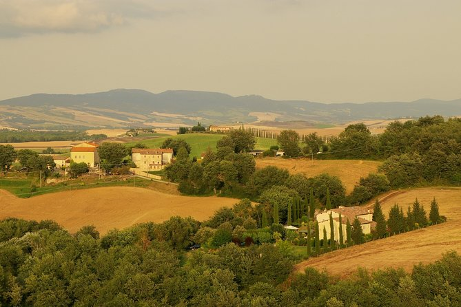 Private Winery and Dinner in Chianti Villa from Florence
