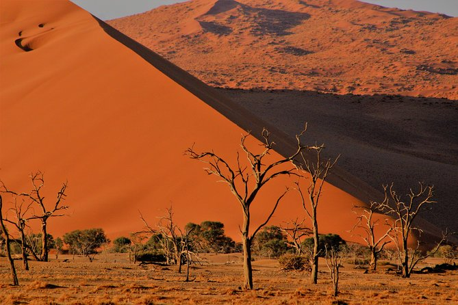 3-Day Private Namib Desert and Naukluft Park from Swakopmund