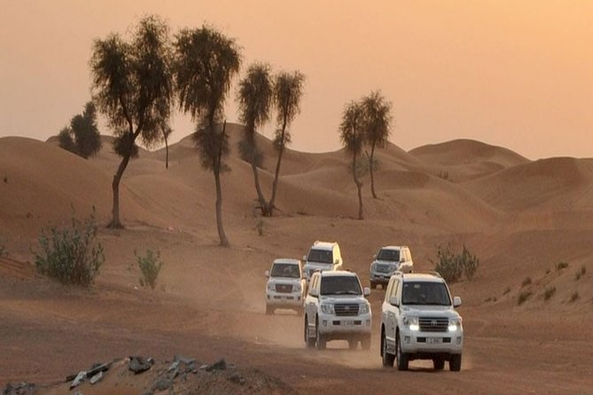 Private Lahbab Safari with Dinner and Live Performances