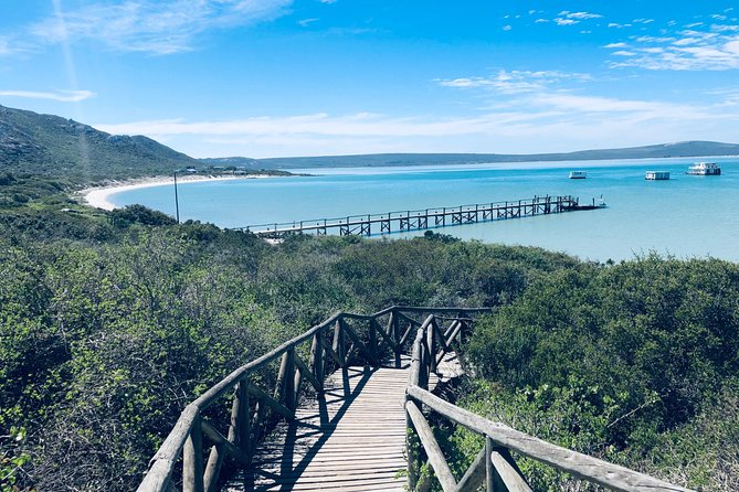 Private Guided Sightseeing Tour of West Coast National Park