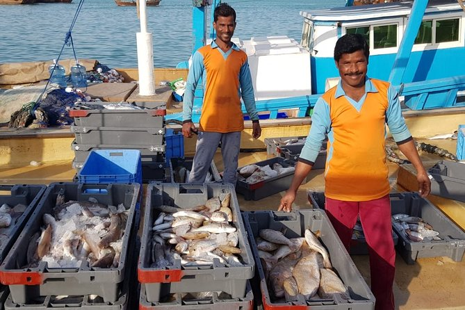 Explore North of Qatar: Visit Zubarah Fort and Fishing Town of Al Khor