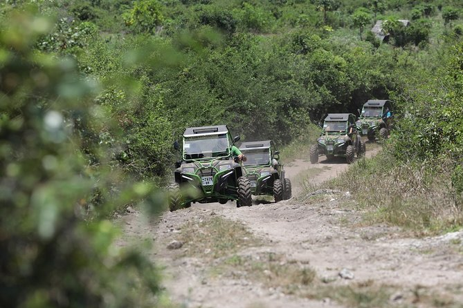 Half-Day Private Guided Nungwi Beach Buggy Tour from Michamvi