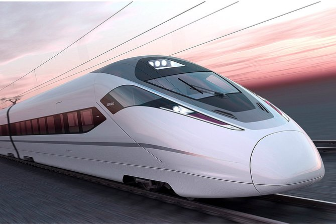 Shanghai Train Station Private Arrival Transfer to Hotel in English Services